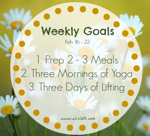 Weekly Goals Feb 16 - 22 | ExSloth.com