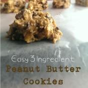 Quick & Easy 3 Ingredient Peanut Butter Cookies | @ExSloth
