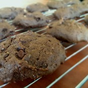Double Chocolate Chip Cookie Recipe | ExSloth.com