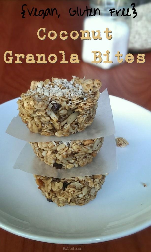 Coconut Granola Bites (Vegan, Gluten Free) | ExSloth.com
