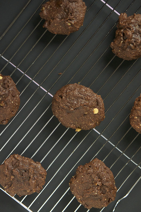 Recipe Bloopers: Double Chocolate Chip Cookies via @ExSloth | ExSloth.com