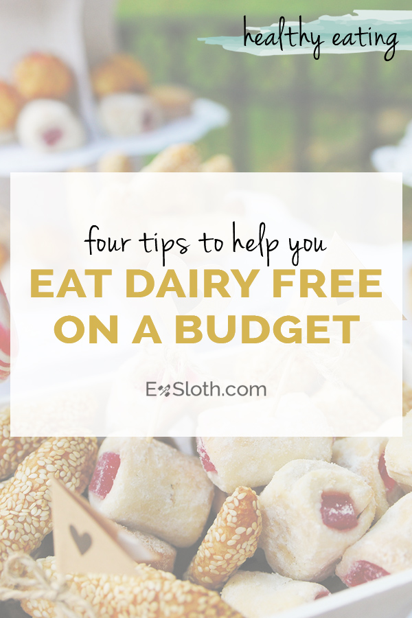 4 Tips For Dairy Free Eating On A Budget Diary Of An Exsloth