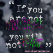 If you are not challenged you will not change | ExSloth.com