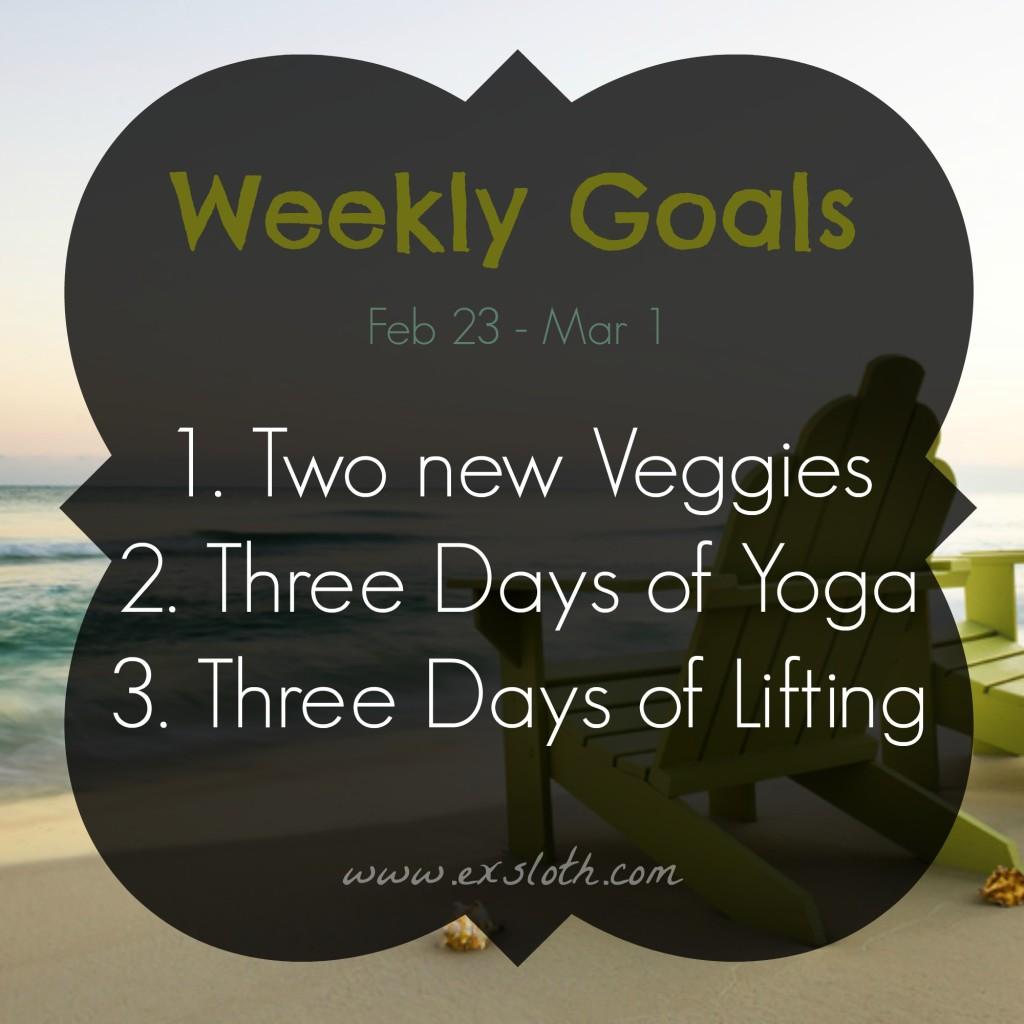 Goals Feb 23 - Mar 1