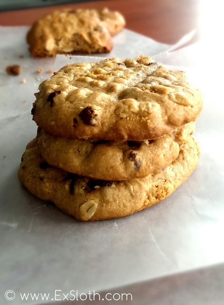 Dry Peanut Butter Cookier | ExSloth.com