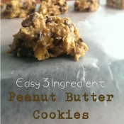 Quick & Easy 3 Ingredient Peanut Butter Cookies | @ExSloth