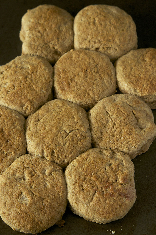 """These Dairy-Free Maple """"Buttermilk"""" Biscuits are soft and flaky with a hint of maple flavour- the perfect dairy free twist to traditional buttermilk breakfast biscuits via @ExSloth   ExSloth.com"""